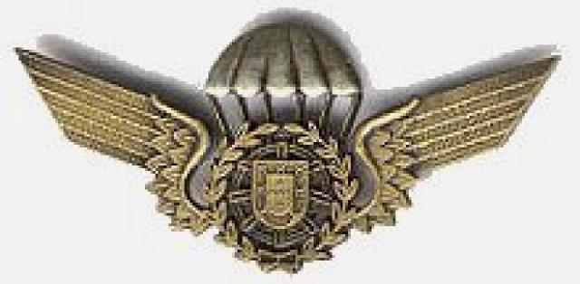 A paratrooper brevet
